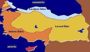Türkiye'deki İklim Tipleri ve Özellikleri