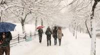 Bu Yıl Ayrupa'da Son 100 Yılın En Soğuk Kışı Yaşanacak