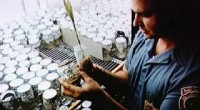 nasa uzayda bitki yetiştirecek